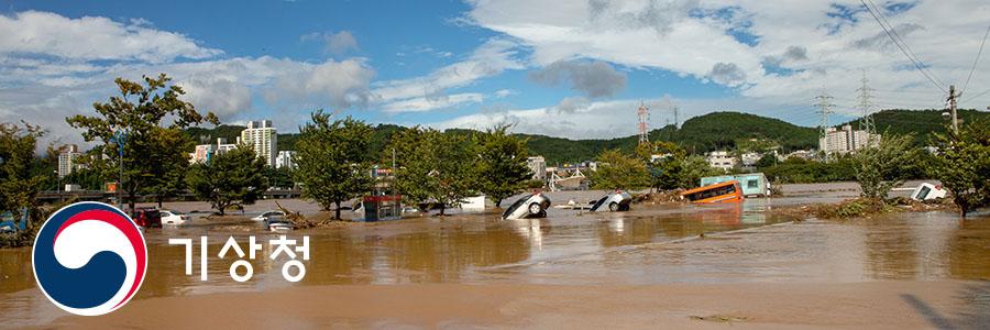 태풍의 피해